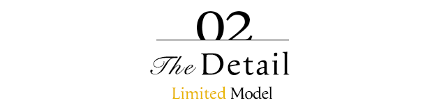 The Detail Limited Model